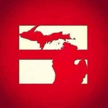 Michigan Gay Marriage Ban Struck Down as Unconstitutional